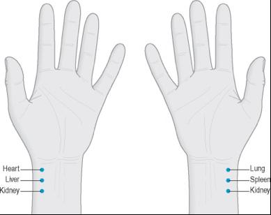 Hand Pulses